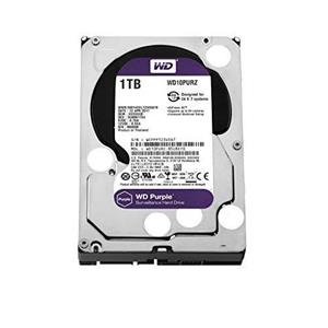 DISQUE DUR Purple 1TB
